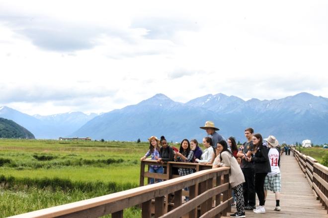 Alaska, scenery, tourist, marsh, mountain, mountains